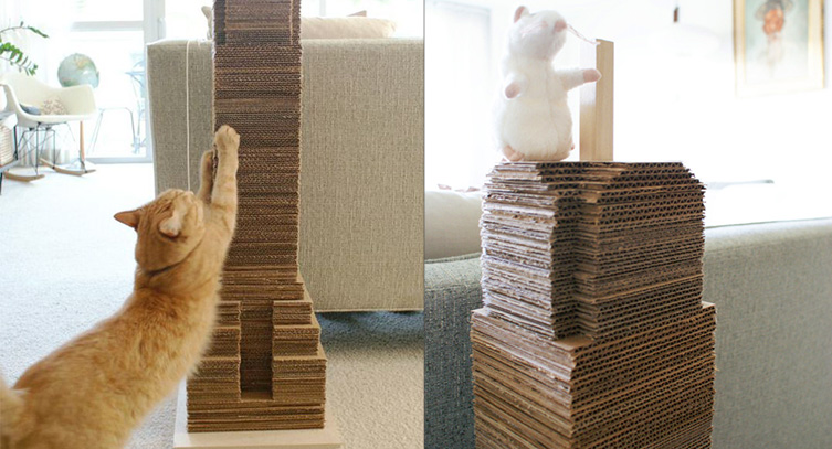 Mobili Per Gatti Fai Da Te : Giocattoli di cartone per gatti selfpackaging